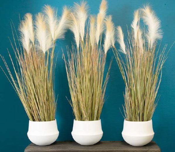 plante decoration bureau accessoire (2)