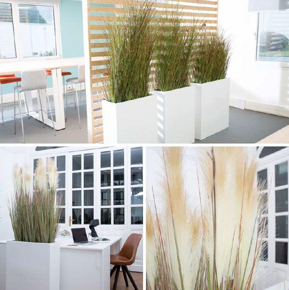 plante decoration bureau accessoire (3)