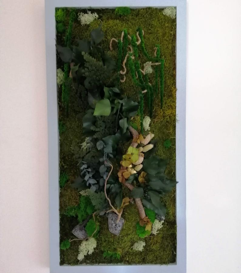 plante decoration bureau accessoire (6)